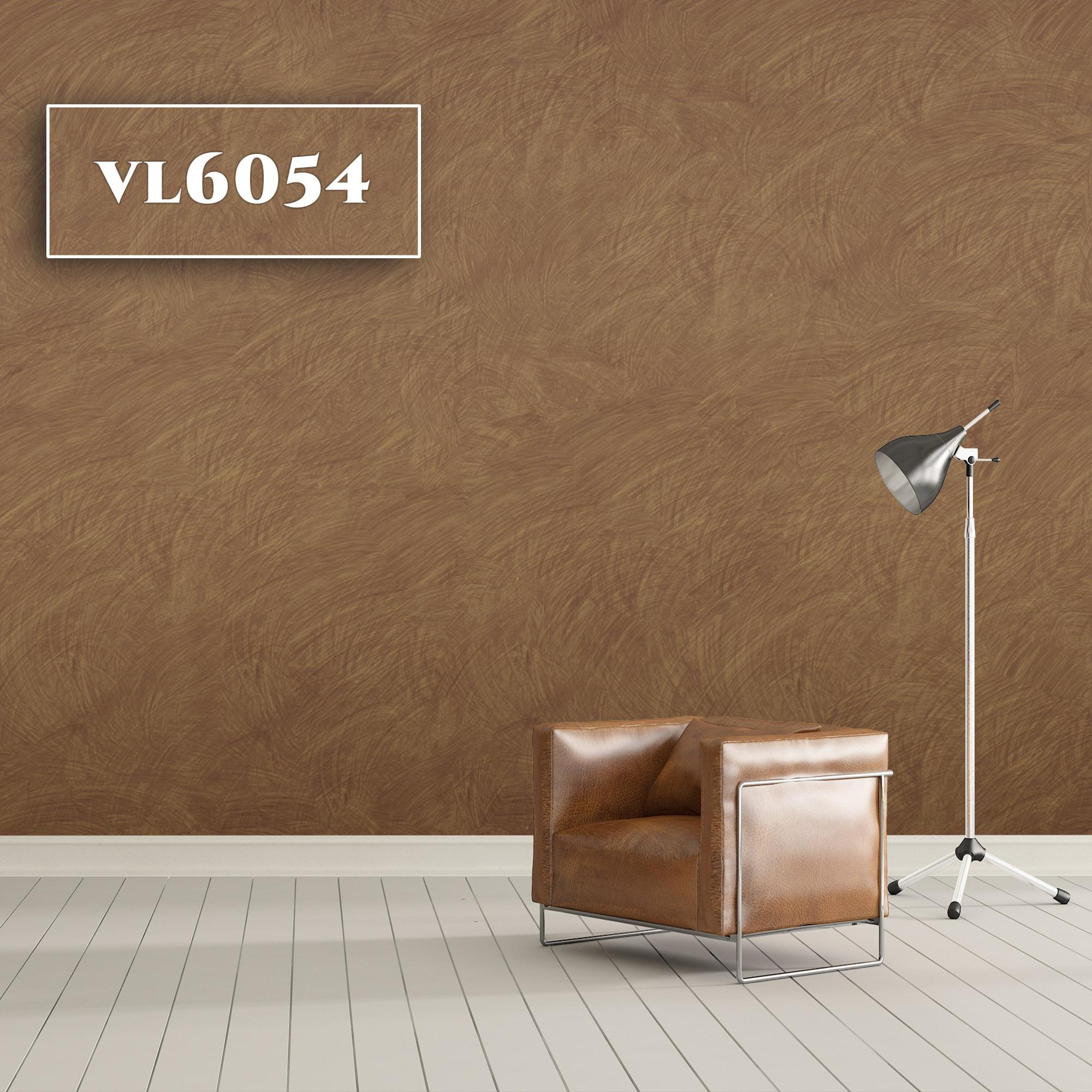 VL6054