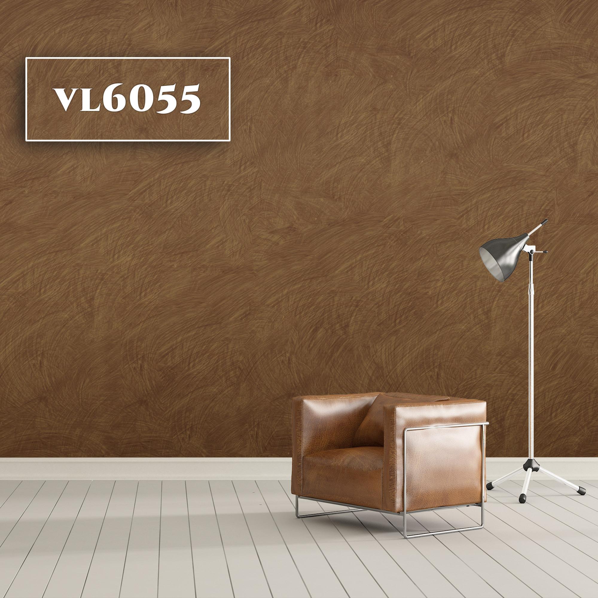 VL6055