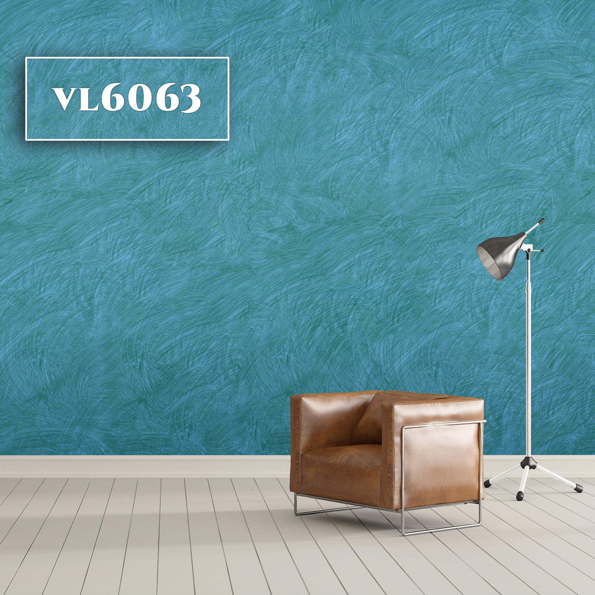 VL6063
