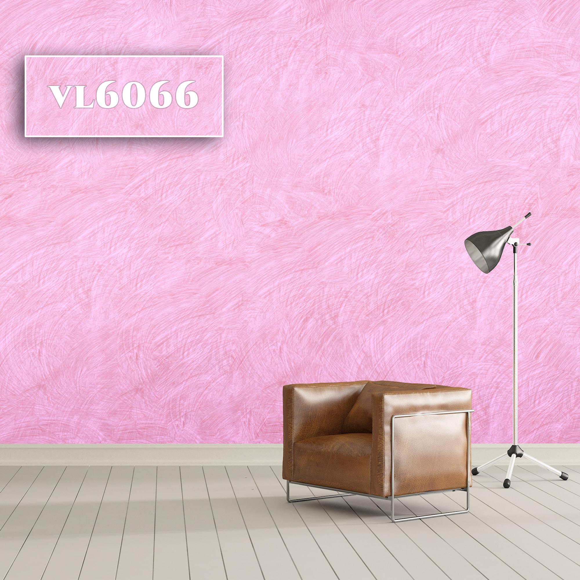 VL6066
