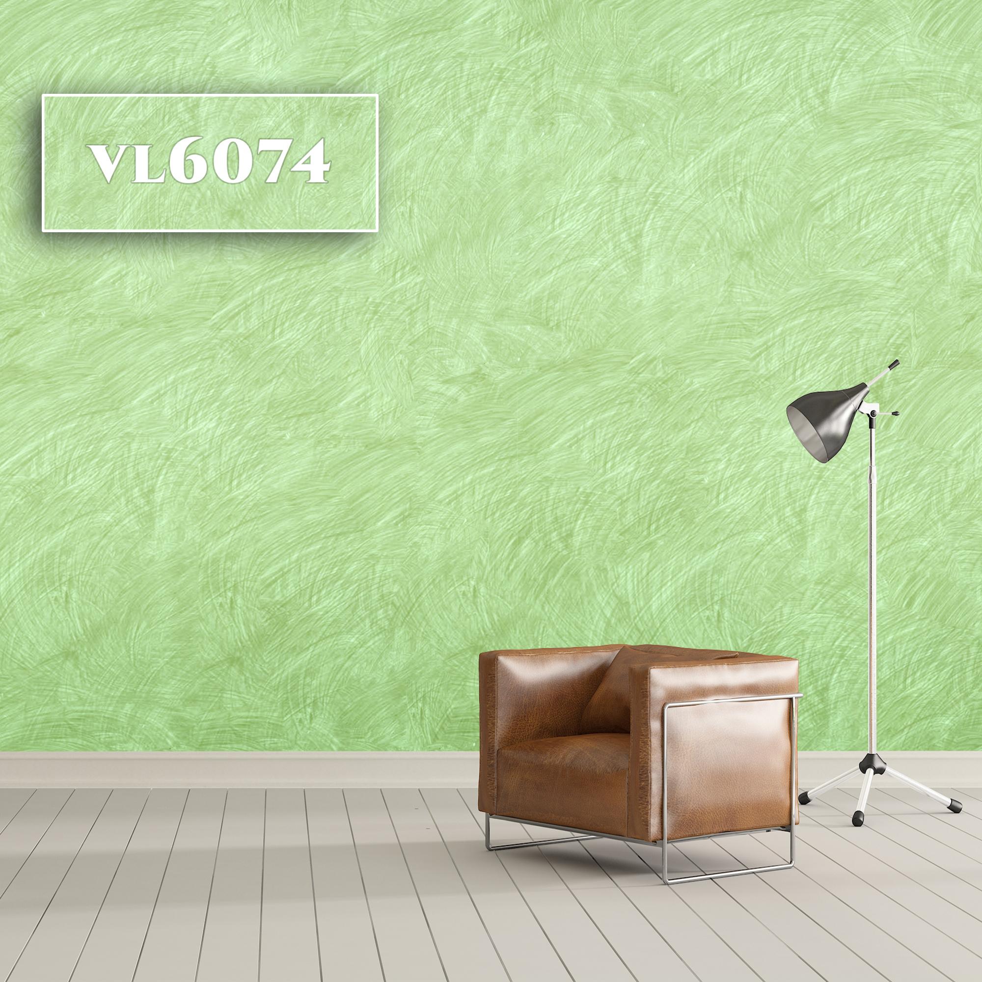 VL6074