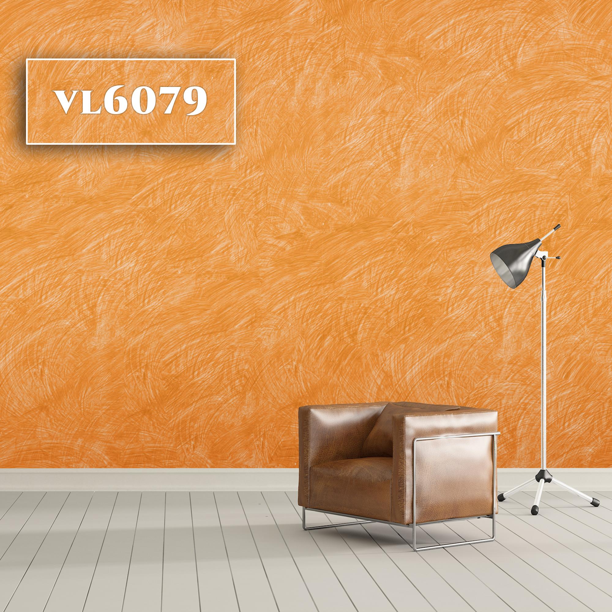 VL6079