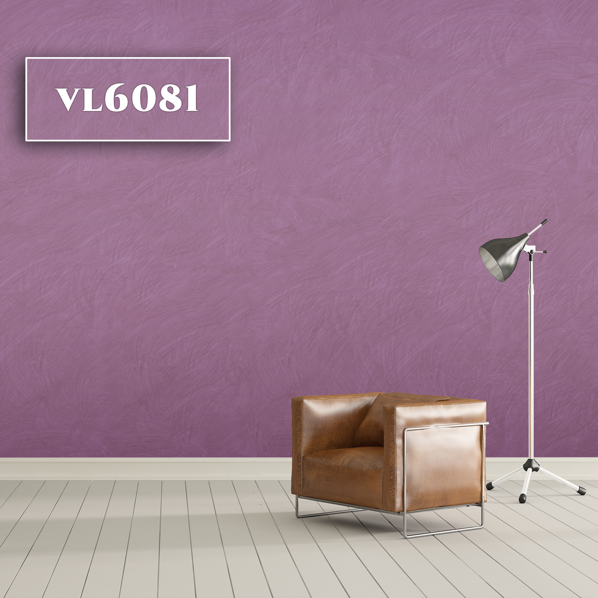 VL6081