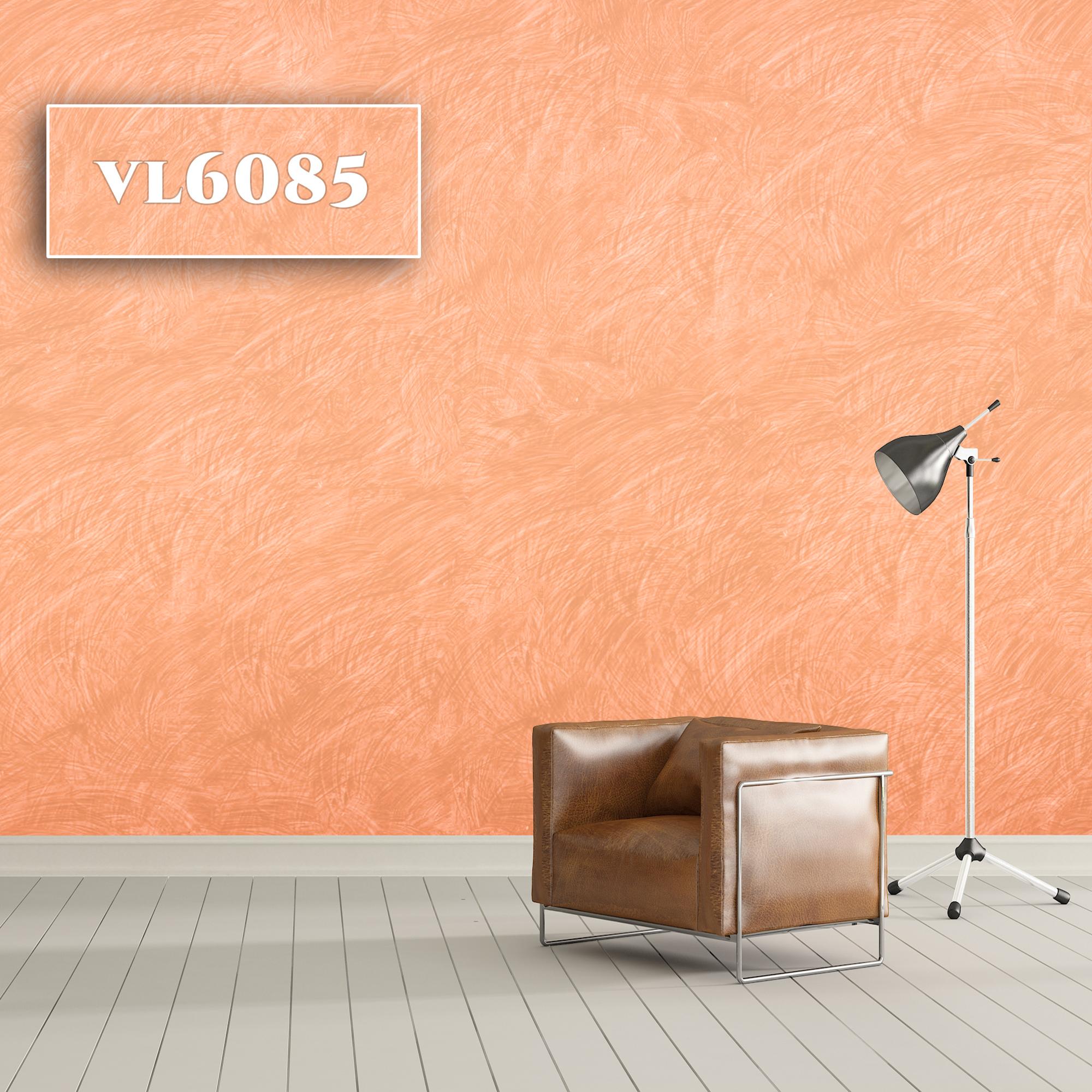VL6085