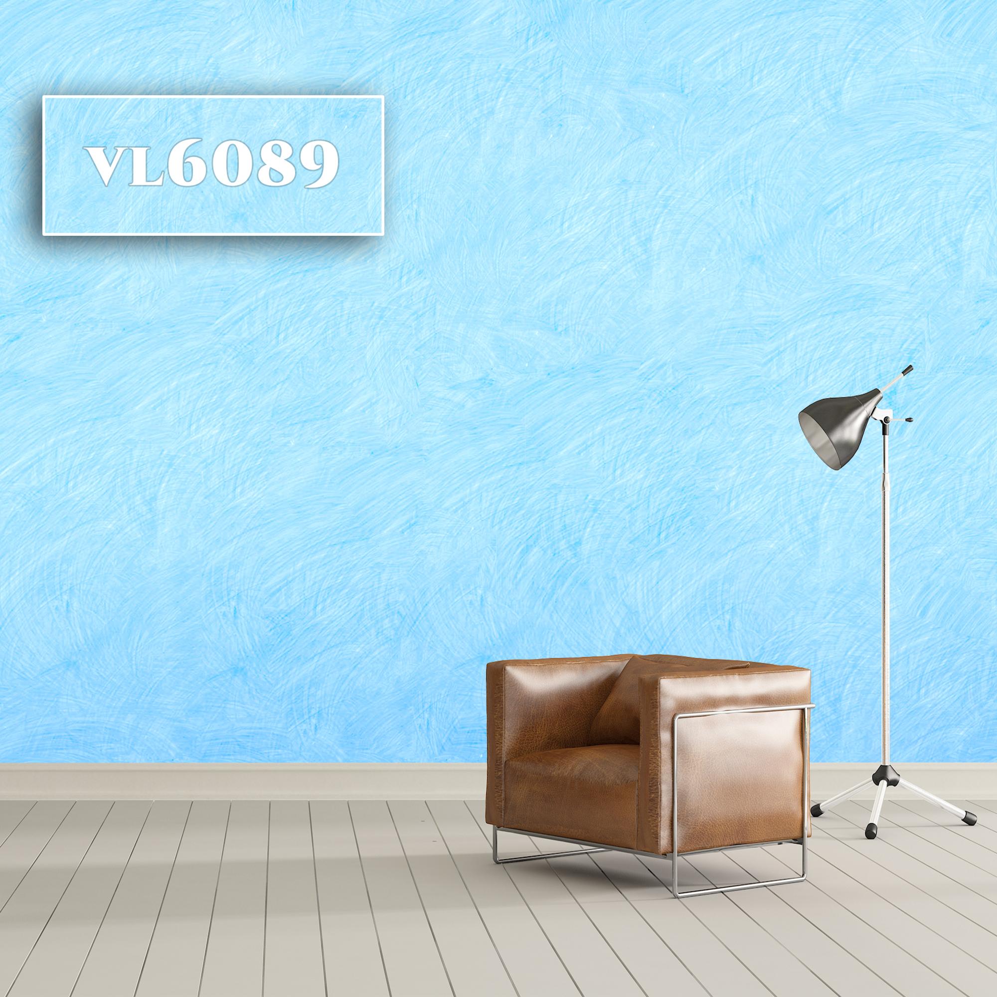 VL6089
