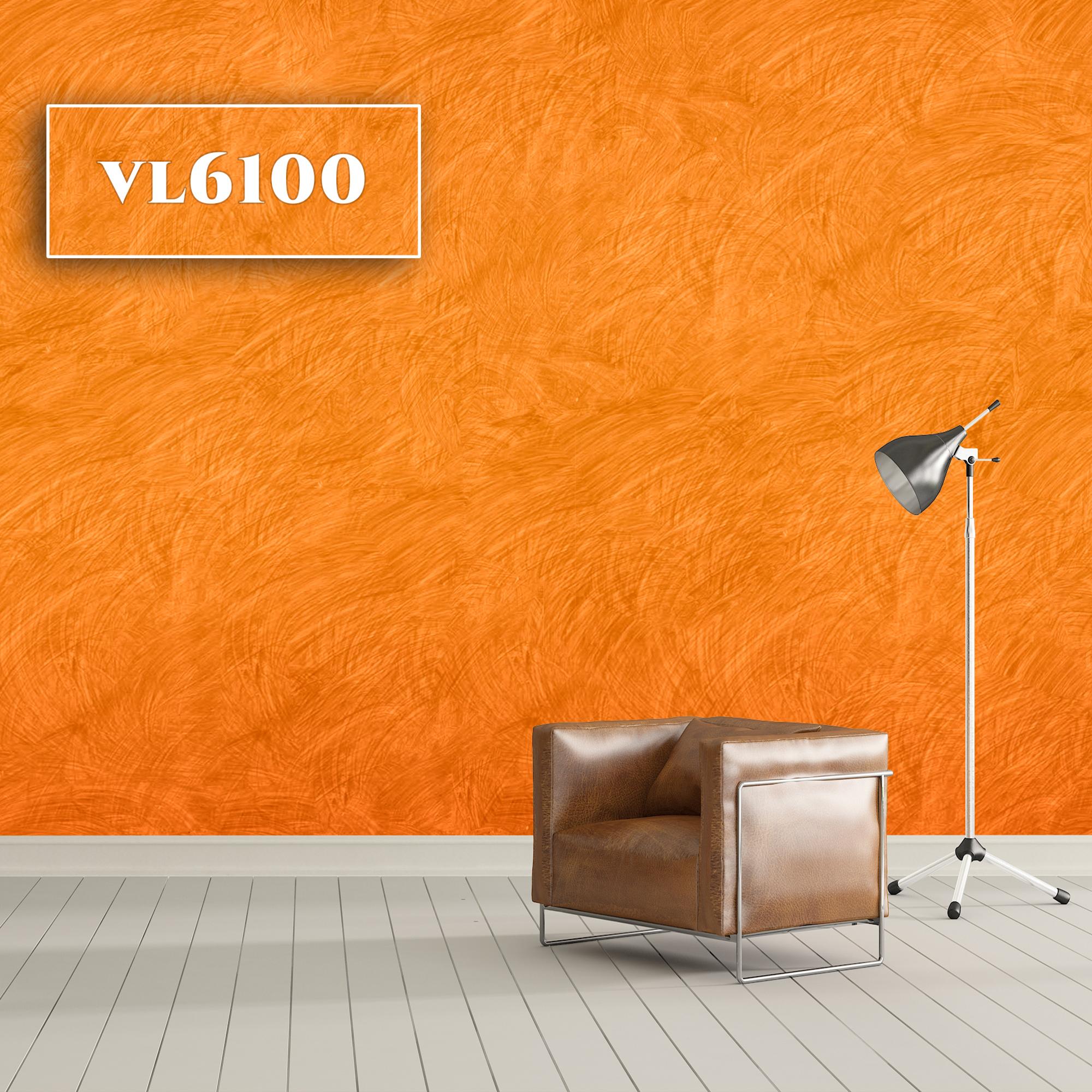 VL6100