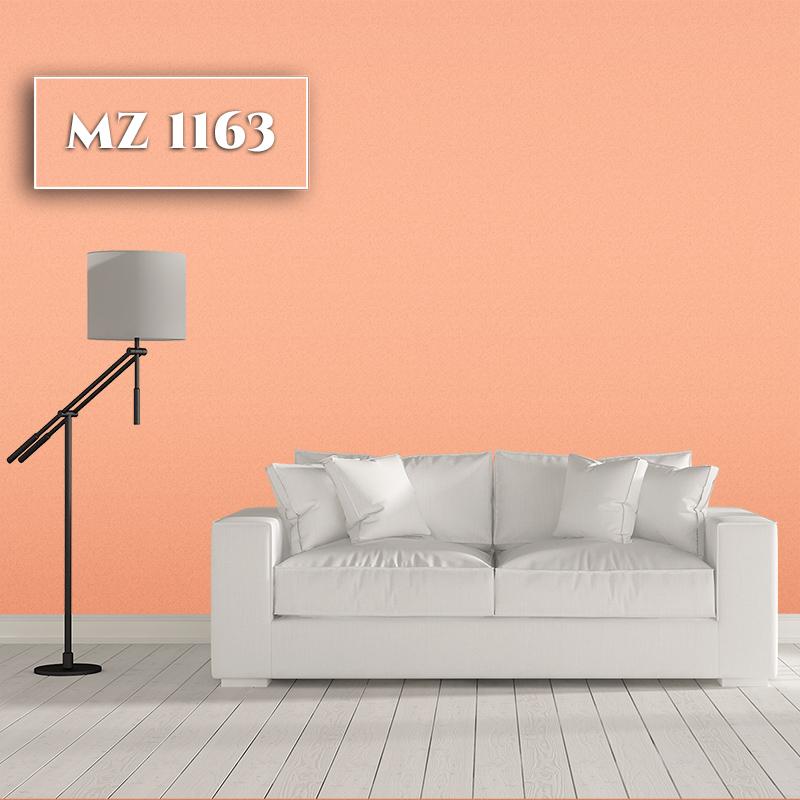 MZ 1163