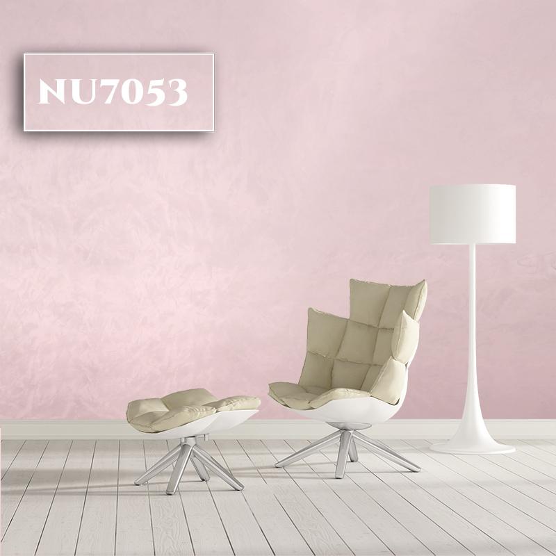 NU7053