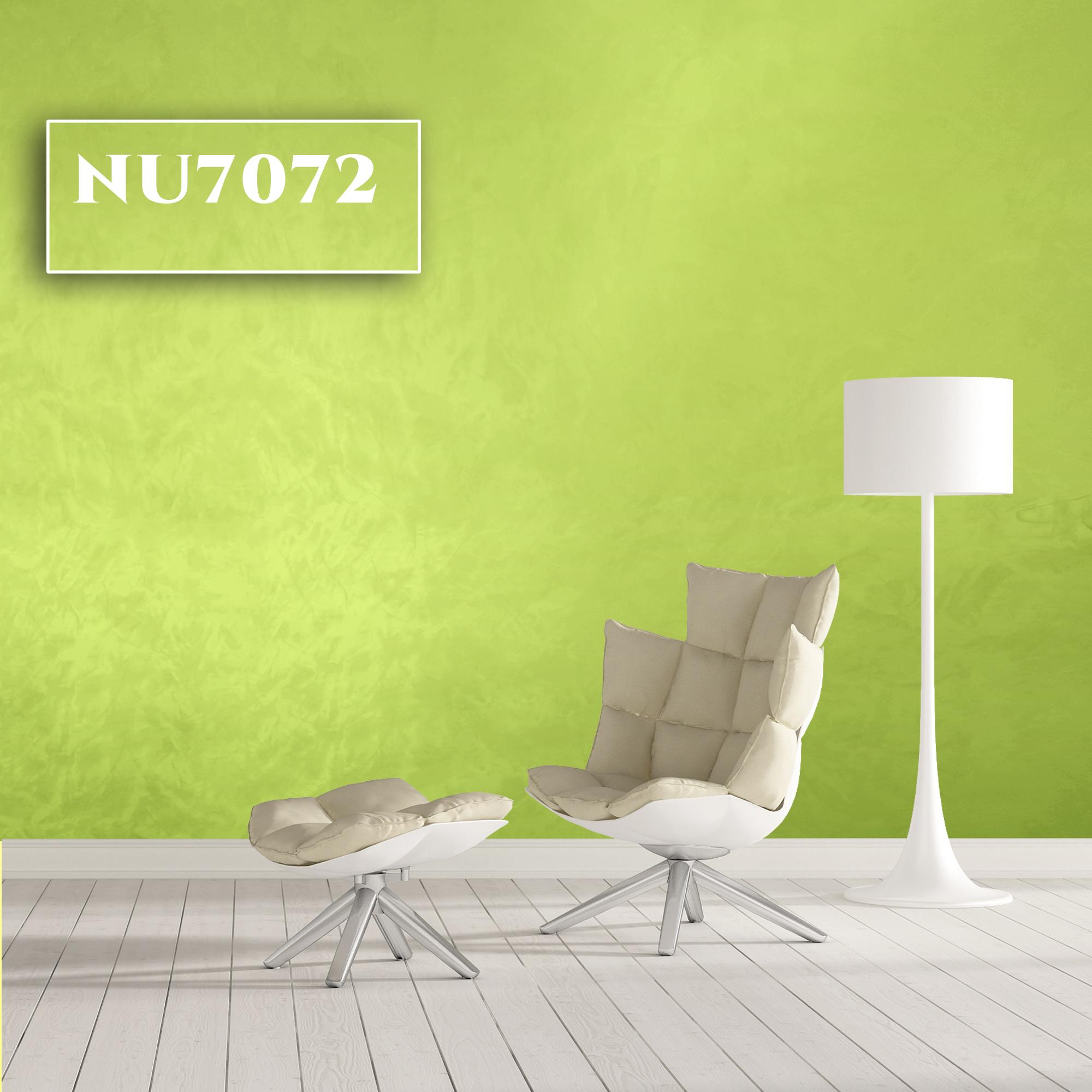 NU7072-1