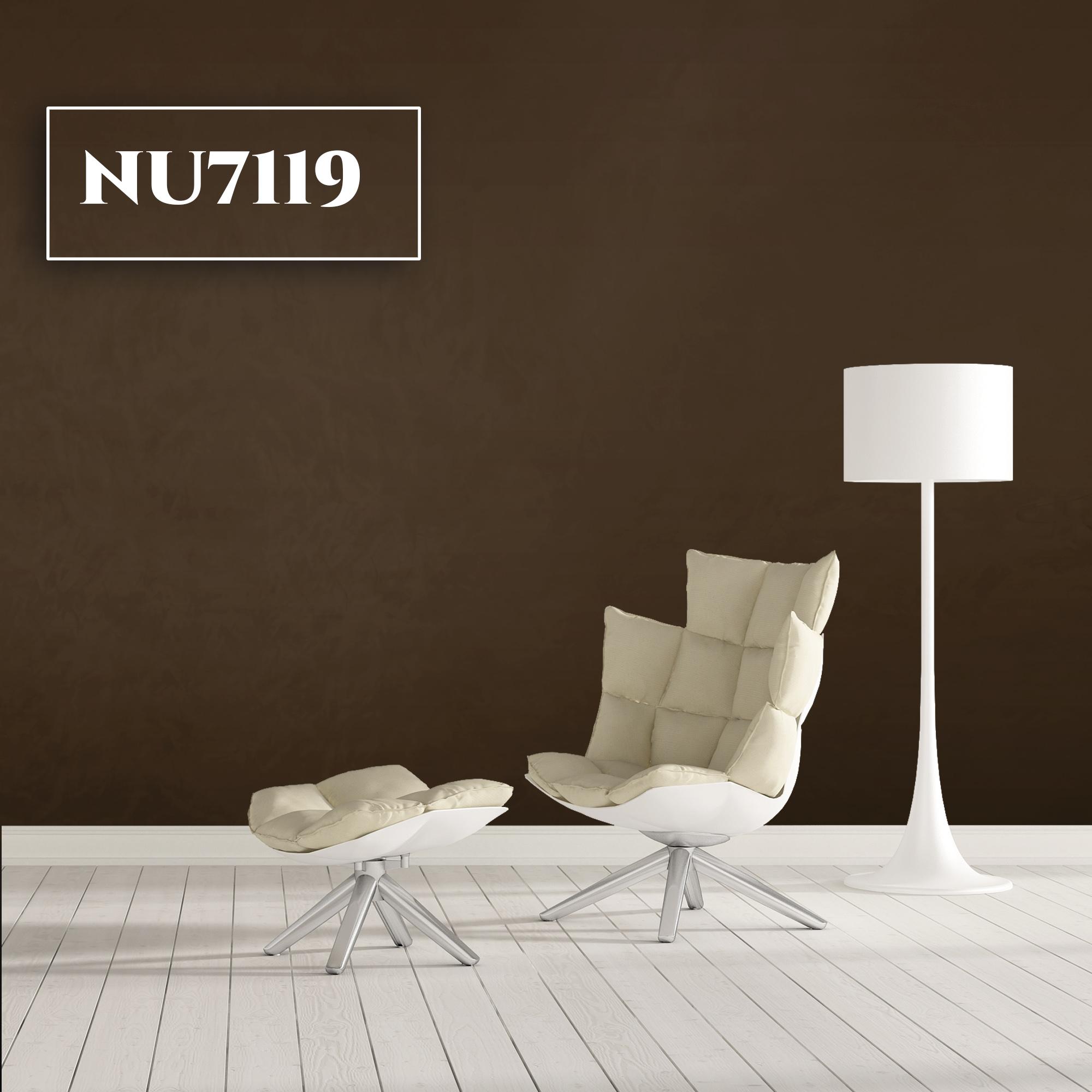 NU7119