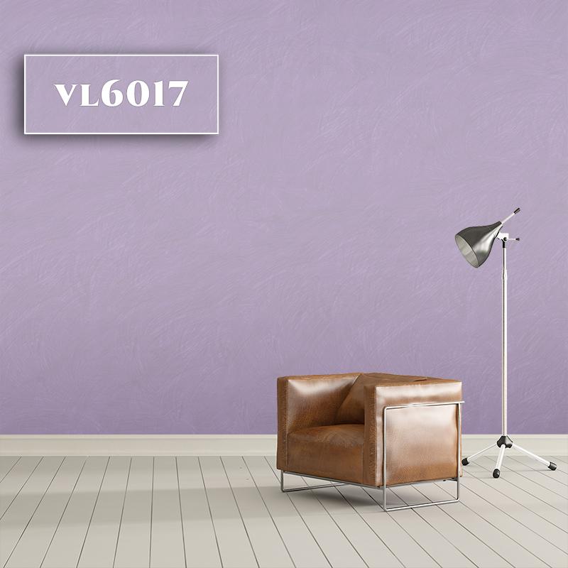 VL6017