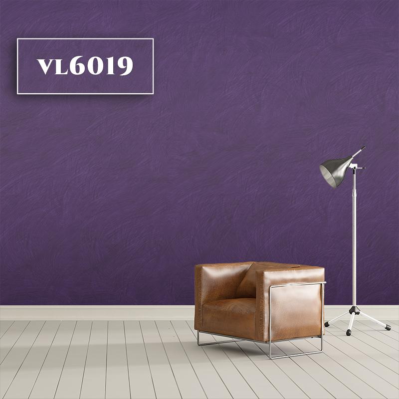 VL6019
