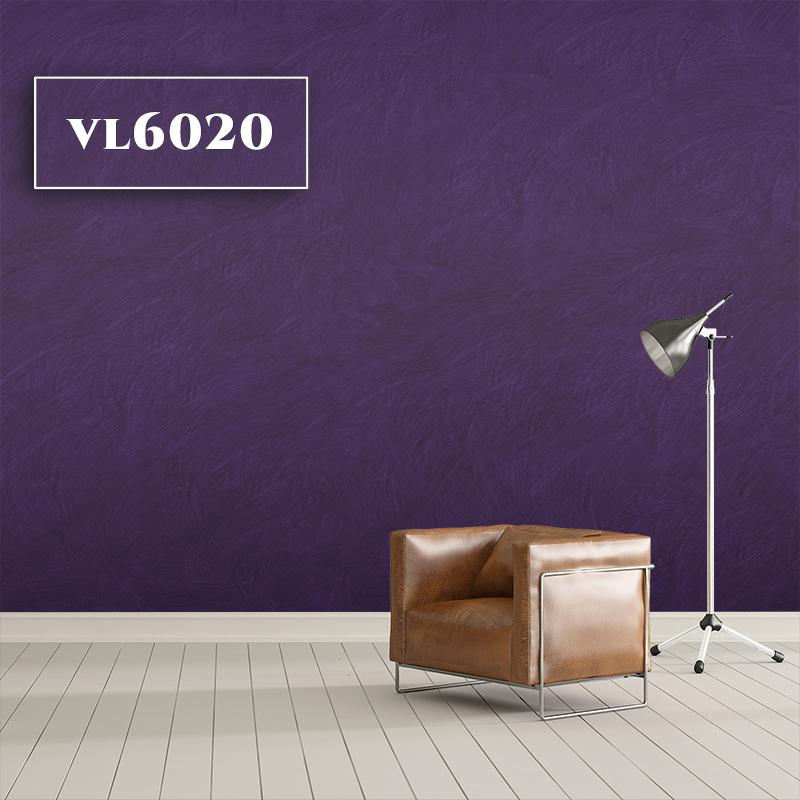 VL6020